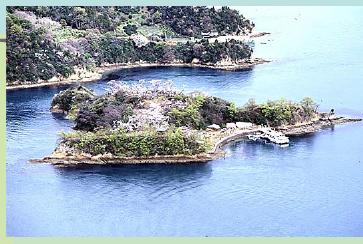 村上水軍本拠:能島